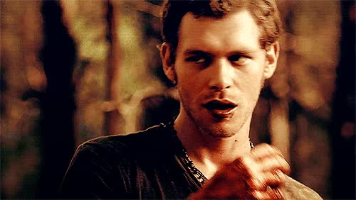 Watch the vampire diaries niklaus mikaelson gif GIF on Gfycat. Discover more related GIFs on Gfycat