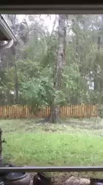 Watch and share Hurricane GIFs and Hillary GIFs on Gfycat