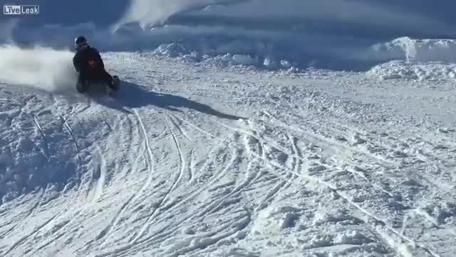 Watch My sled people need me GIF by lasagna on Gfycat. Discover more mypeopleneedme GIFs on Gfycat