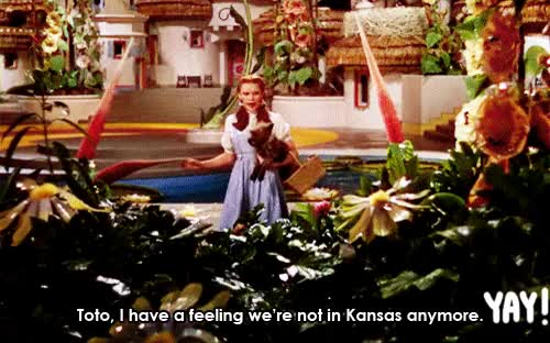 Watch and share Not Cool, Kansas. Not Cool. GIFs on Gfycat