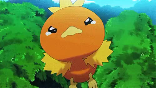 Watch Hidden Heaven GIF on Gfycat. Discover more Gif, ORAS, Pokeani, Pokemon, Pokemon Gif, Pokémon, Spoilers, Torchic, bless that lil chicken, my gif GIFs on Gfycat