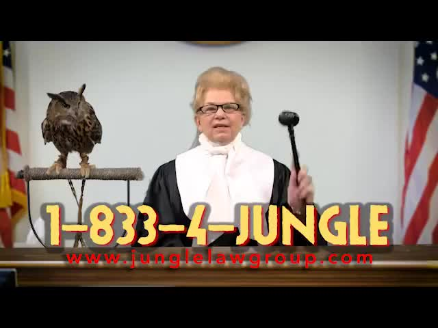 Watch Jungle Law Group Commercial #3 GIF on Gfycat. Discover more Jungle Law, People & Blogs, animal attorneys, animal lawyer, animal rescue, jungle law group, jungle lawyer, kansas city, lawyer commercial, tarzan the law man GIFs on Gfycat