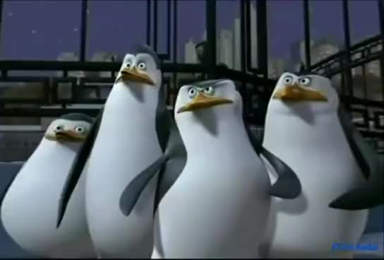 Watch the masked booty GIF on Gfycat. Discover more Penguins of madagascar King Julien Mort dance Maurice at pea GIFs on Gfycat
