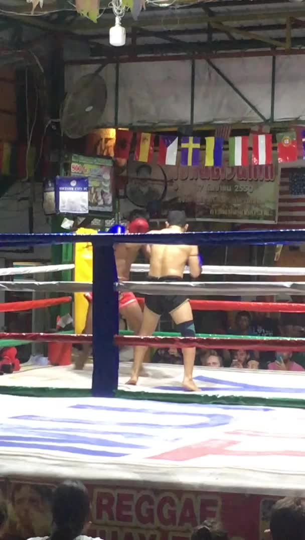 Watch Muay Thai fighter gets sent flying GIF on Gfycat. Discover more SquaredCircle, bailey2207, wrestling GIFs on Gfycat