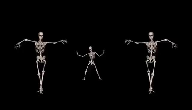 Watch and share Skeleton Belly Dance Trio GIFs on Gfycat
