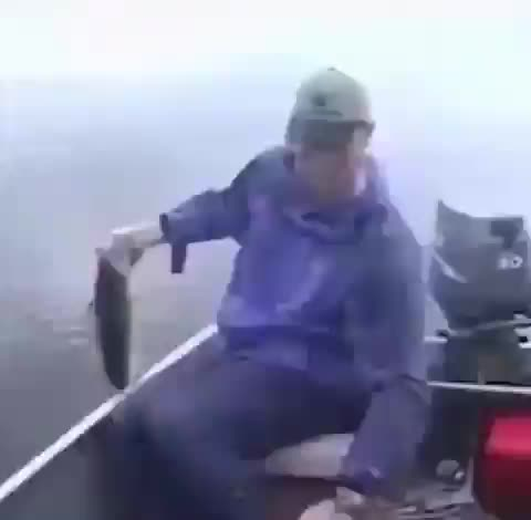 fishing, Catch and release GIFs
