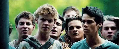 Watch Gladers | The Maze Runner Random Fandom Imagines GIF on Gfycat. Discover more alby, alby imagine, gladers, imagines, maze runner, maze runner imagines, mazerunnermovie, minho, minho imagine, newt, newt imagine, the maze runner, the maze runner imagine, thomas, thomas imagine GIFs on Gfycat
