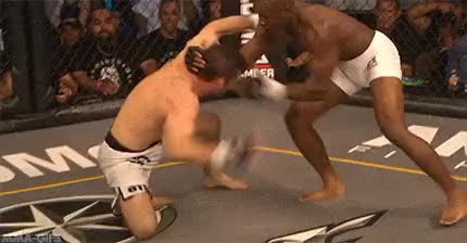 Watch and share Mixed Martial Arts GIFs and Mma GIFs on Gfycat
