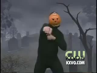 Watch and share Pumpkin GIFs on Gfycat