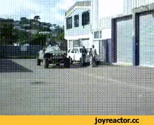 Watch IRL GIF on Gfycat. Discover more related GIFs on Gfycat
