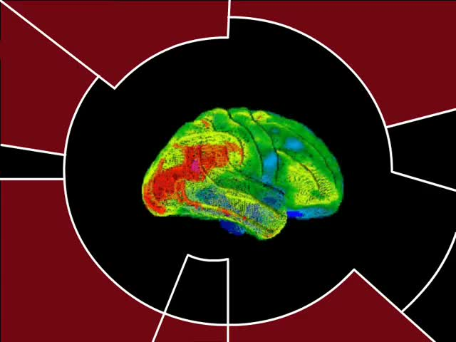 Watch DS9 Brain Scan GIF by @chaosoverfiend on Gfycat. Discover more Star Trek GIFs on Gfycat