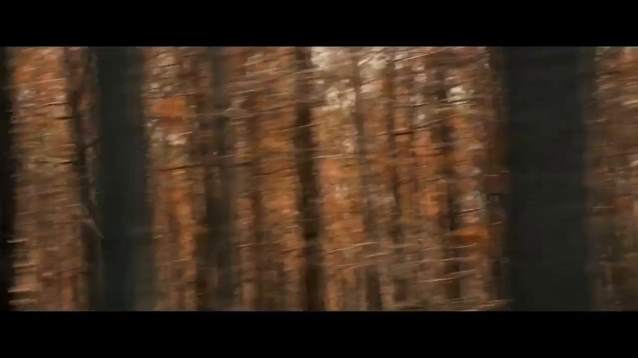 Hick Official Trailer 1 2012 Chloe Grace Moretz Movie HD