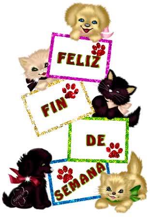 Watch and share FELIZ FIN DE SEMANA GIFs on Gfycat