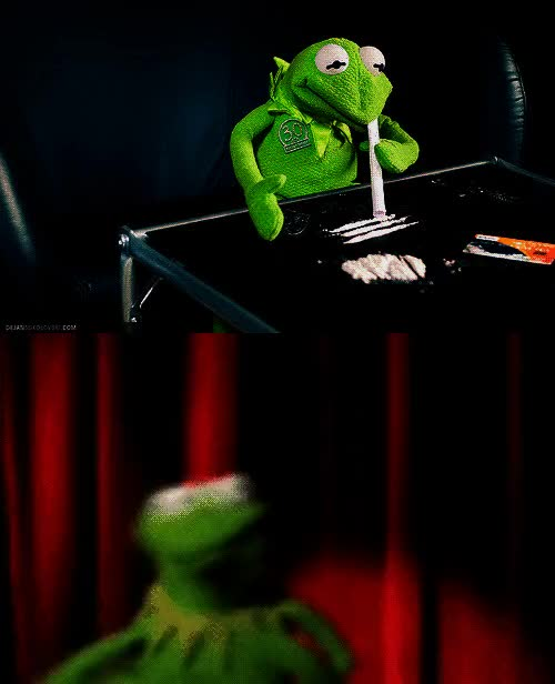 Showing Porn Images For Kermit The Frog Gif Porn