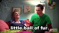 Watch and share Jim Parsons Kaley Cuoco Penny Big Bang Theory Sheldon Soft Kitty GIFs on Gfycat