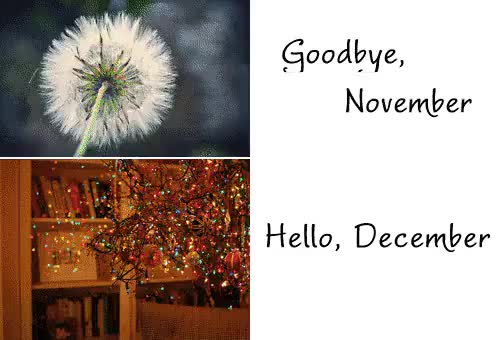 Watch and share Hello December Good Bye November | Goodbye, November. Hello, December GIFs on Gfycat