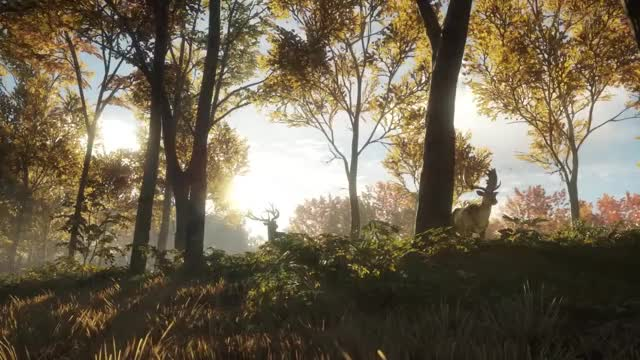 Watch and share TheHunter: Call Of The Wild GIFs by Alex Wiltshire on Gfycat