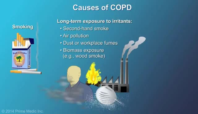 Watch Understanding COPD GIF on Gfycat. Discover more related GIFs on Gfycat
