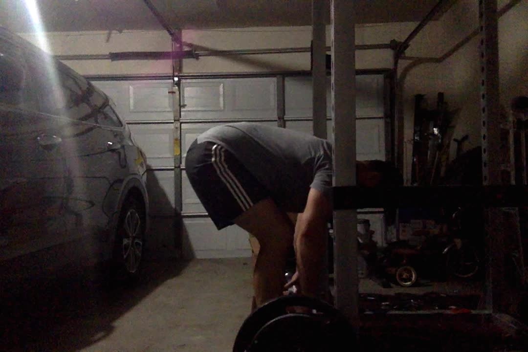 Romanian deadlifts, 195 GIFs