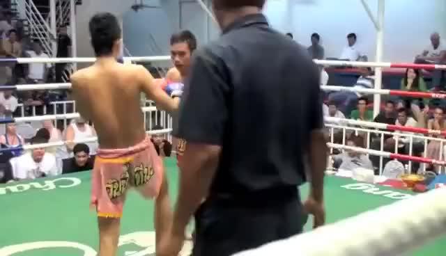 Watch Muay Thai Leg Kick KO GIF on Gfycat. Discover more Kick, Leg, Muay, Thai GIFs on Gfycat