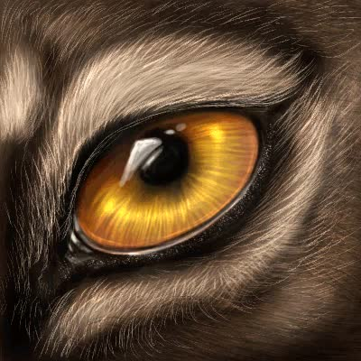 Watch and share Wolf Eyes GIFs and Blinking GIFs on Gfycat