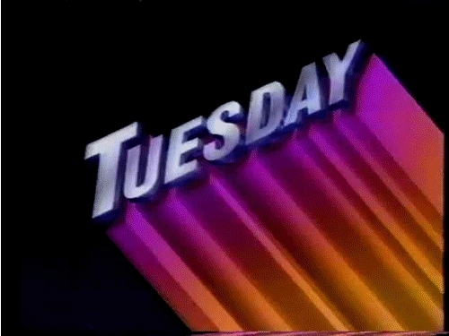 days of the week, tuesday, tuesd GIFs