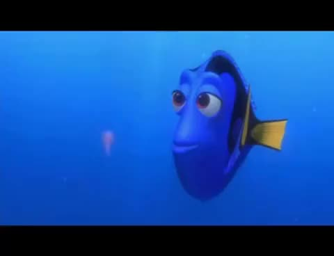 Watch and share Dori GIFs on Gfycat