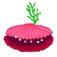 Watch and share Clam Shell Photo: CLAM 784e3e1f.gif GIFs on Gfycat