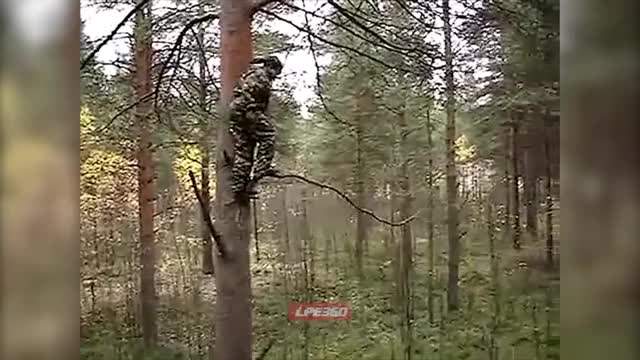 Watch WCGW trust jumping GIF on Gfycat. Discover more related GIFs on Gfycat