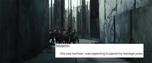 Watch Pretty much,yes. GIF on Gfycat. Discover more escape, the maze, the maze runner, tmr edit, tmr fandom GIFs on Gfycat