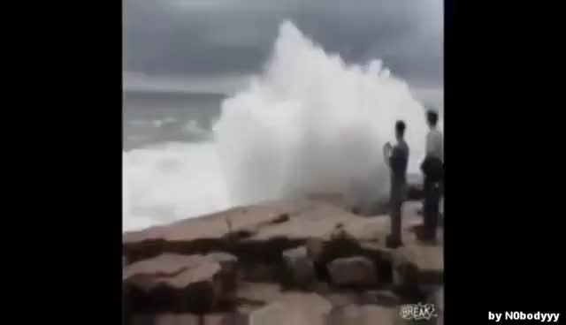 Watch and share Tourists GIFs on Gfycat