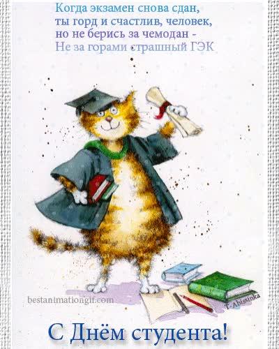 Watch and share День Студентов GIFs and Татьянин День GIFs by Global Reaction GIFs on Gfycat