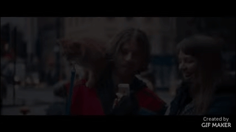 gifs, movies, selfies, A Street Cat Named Bob GIFs