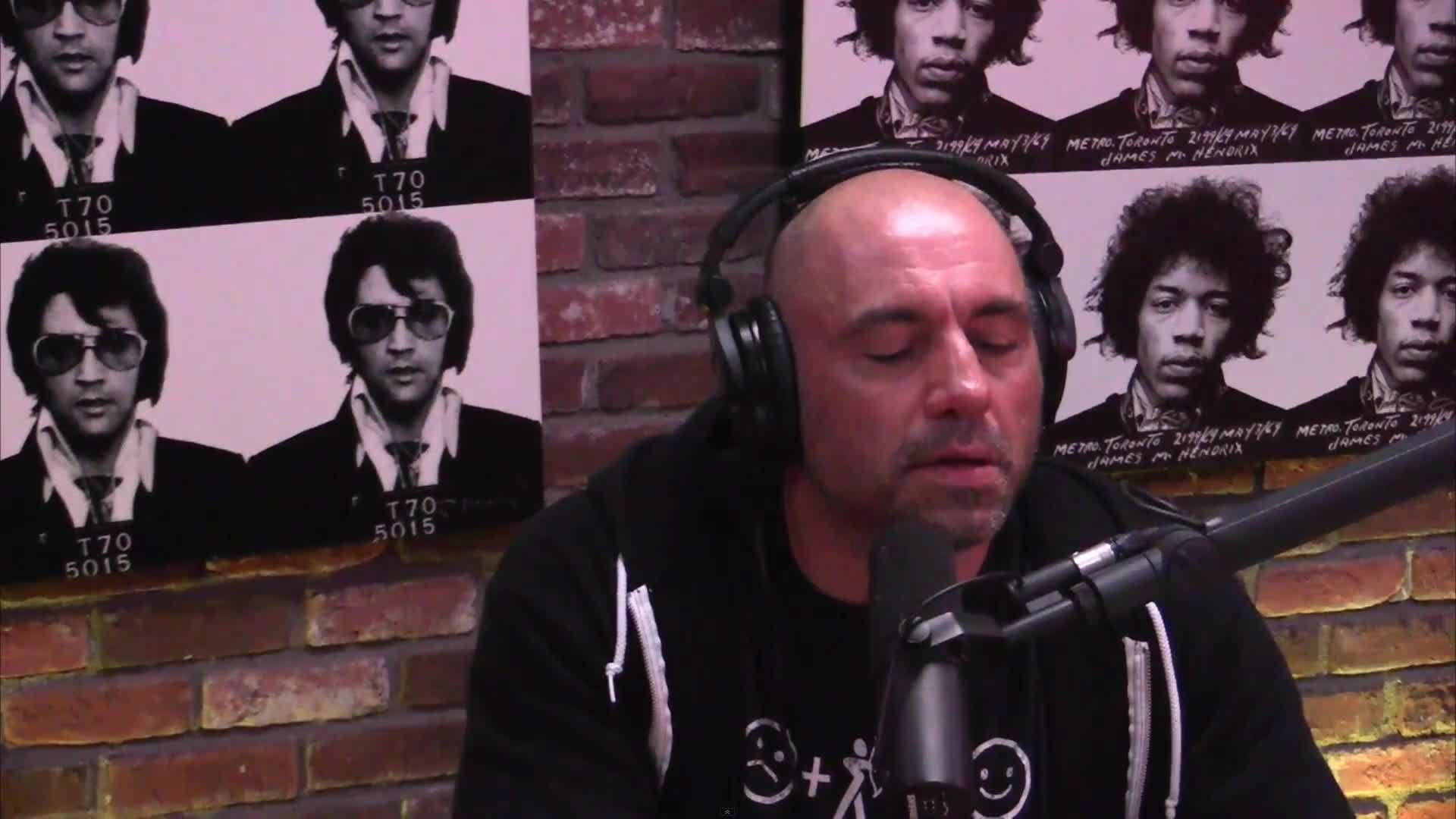 gifs, joerogan, Untitled GIFs