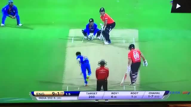 Watch Amit Mishra: What went wrong? Where did it go wrong? Or just unlucky? (reddit) GIF on Gfycat. Discover more BetterEveryLoop, Cricket GIFs on Gfycat
