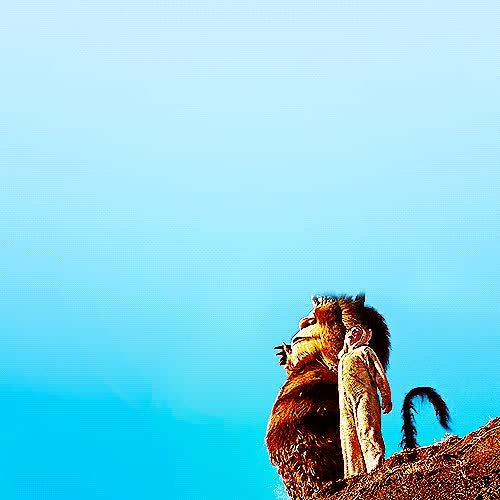 Watch Where The Wild Things Are GIF on Gfycat. Discover more related GIFs on Gfycat