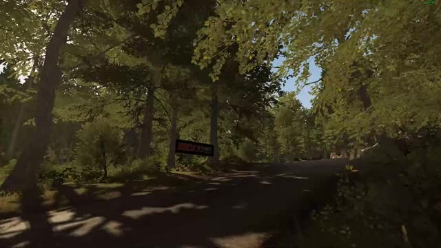 Watch and share Dirt Rally GIFs and Simracing GIFs by Stuffed_Shark on Gfycat