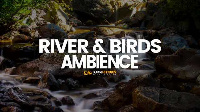 Watch Flowing River & Birds Ambience (Free Sound Effects) GIF on Gfycat. Discover more bird, birds, birds sounds, burghrecords, flowing, free download, free to use, nature, nature sounds, river, river sounds, royalty free, sfx, sound effect, sound effects, sounds, sounds of nature, sounds of nature birds, water, water sounds GIFs on Gfycat