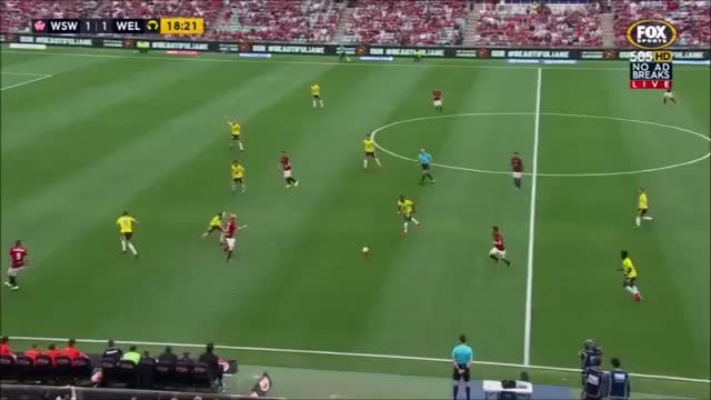 Watch and share Wel Break WSWvWel19minutes GIFs by football22 on Gfycat