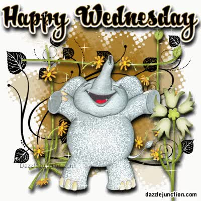 Watch and share Happy Wednesday Sparkle Graphic GIFs on Gfycat