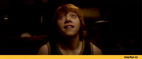 Watch geek GIF on Gfycat. Discover more rupert grint GIFs on Gfycat