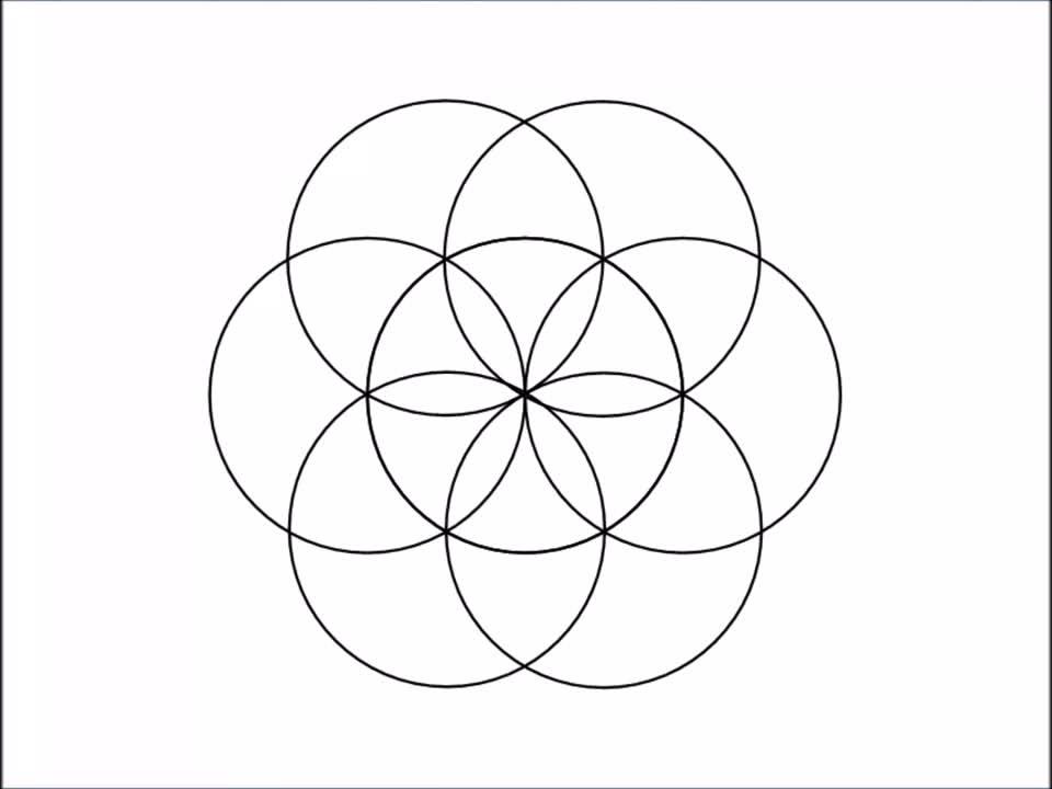 holofractal, Flower of Life - Yin Yang - Fibonacci - Star of David - Torus - Fractals : UNIFIED (reddit) GIFs