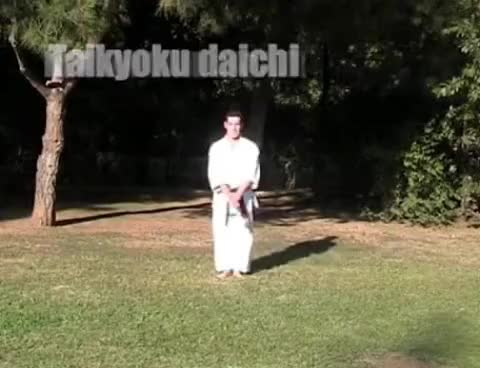 Watch and share Kata Básico -  Basic Kata - Karate Goju Ryu GIFs on Gfycat