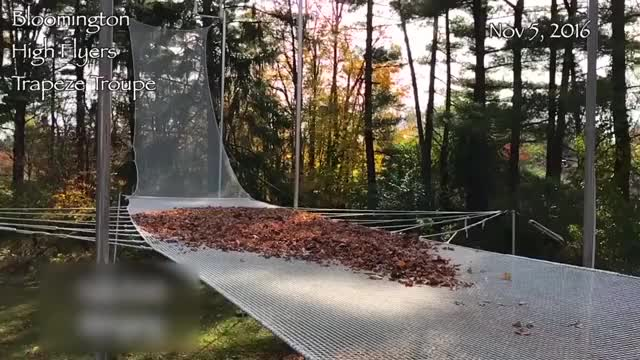 Watch and share Trapeze Artist Lands In Pile Of Leaves GIFs by dickcamelot on Gfycat