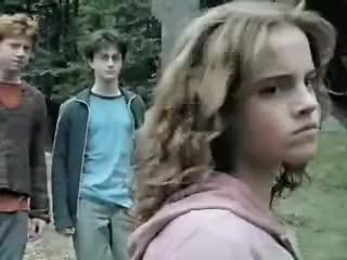 Watch punched GIF on Gfycat. Discover more harry potter punch GIFs on Gfycat