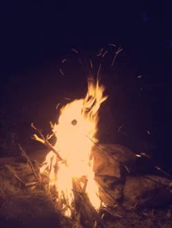 Watch and share Nature, Fire, Marshmallow, Stick, Burning, Camp Fire GIFs on Gfycat