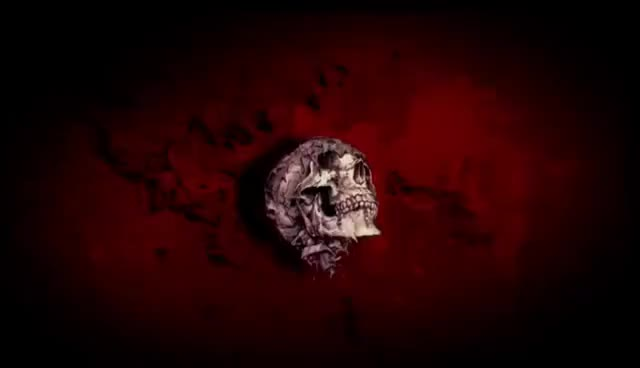 Watch Bloody Disgusting GIF on Gfycat. Discover more Blood, Bloody, Disgusting, Gore, Skull GIFs on Gfycat