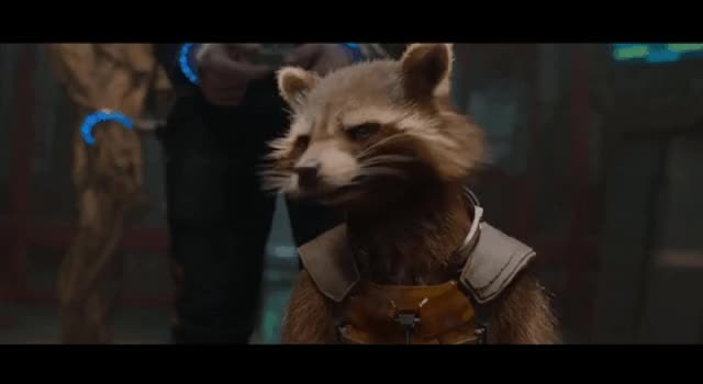 Watch Rocket racoon GIF on Gfycat. Discover more related GIFs on Gfycat