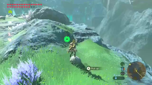 Watch  #BreathoftheWild #NintendoSwitch GIF by swimgaming on Gfycat. Discover more related GIFs on Gfycat