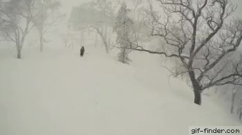 Watch Skier Crashes Into Tree GIF on Gfycat. Discover more related GIFs on Gfycat